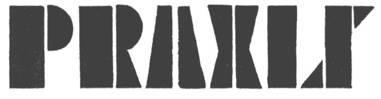 Praxis - copie 4